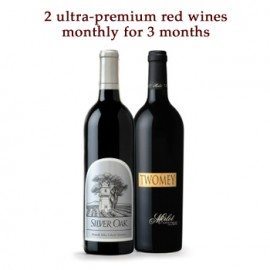 Exclusive Quality Wine Gift of the Month Club - 3 Months